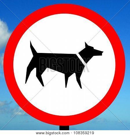 No dog walking allowed order sign
