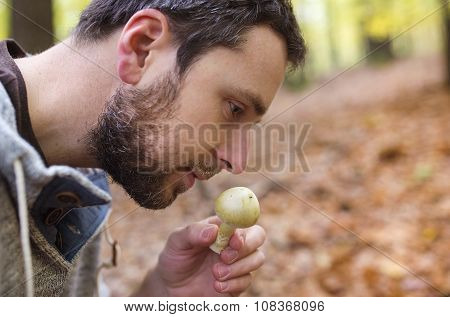 Man picking mushrooms