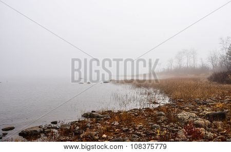 Shoreline and beach meets fog on the river.