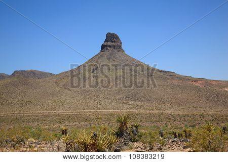Mountain And Desert Landscape