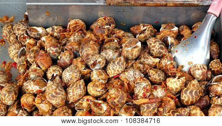 Fried Sea Snails With Chili