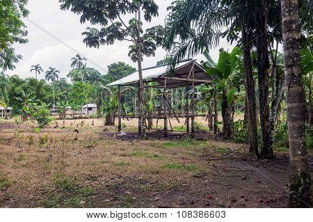 Encampment, Cuyabeno Wildlife Reserve