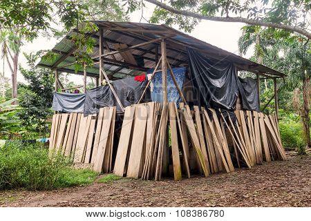 Lodge, Cuyabeno National Park