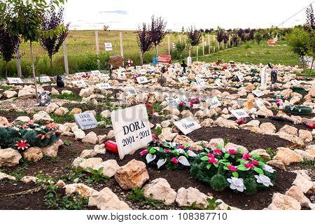 Pet Cemetery In Hunedoara City