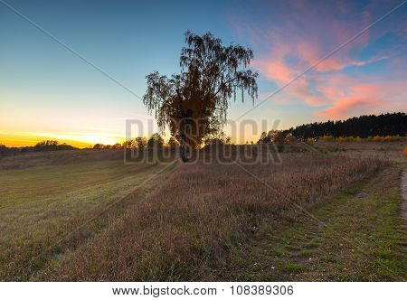 Beautiful Autumnal Landscape With Trees And Beautiful Countryside