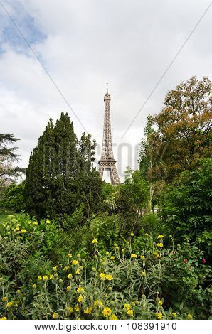 Eiffel Tower And Blossoming Trees In Paris
