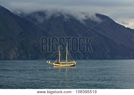 Whale watching tours from old sailing ship at Husavik bay area