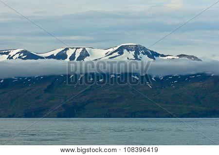 North coast of Iceland on the shores of Skjalfandi shaky bay