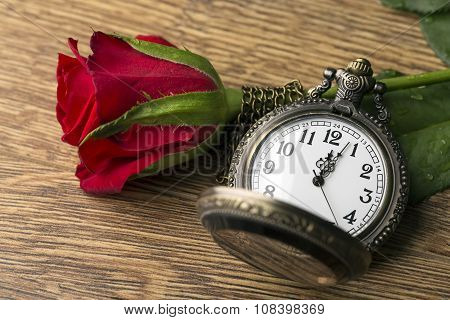 Red Rose And Time