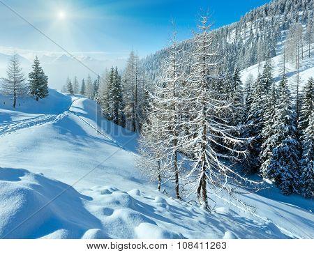Morning Winter Misty Mountain Landscape