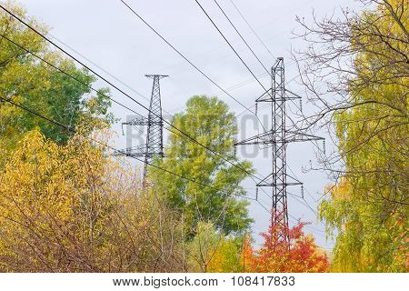 Transmission Towers Of Overhead Power Lines Against Autumn Foliage