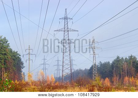 Several Overhead Power Lines Among Autumnal Forest