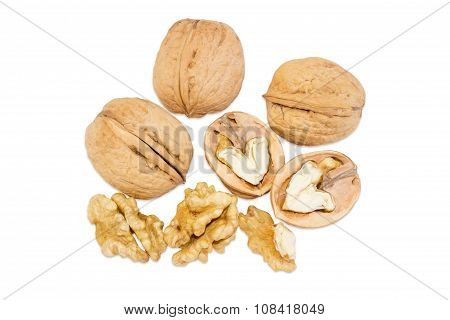 Several Walnuts On A White Background