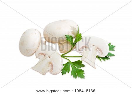 Several Champignon Mushroom And A Leaf Of Parsley
