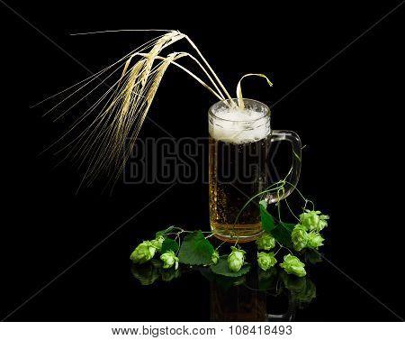 Beer Glassware With Beer, Branch Of Hops, Ears Of Barley