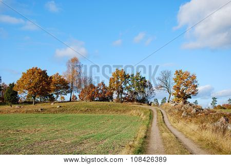 Tracks Into A Rural Landscape