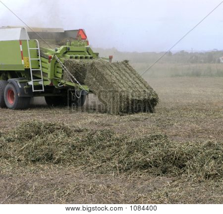 A Large Bale Of Pea Vine Hay Falling From The Back Of The Baler