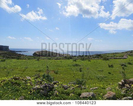 Small island landscape