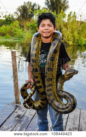 Local Boy With An Anaconda In The Amazon Rainforest, Manaos, Brazil