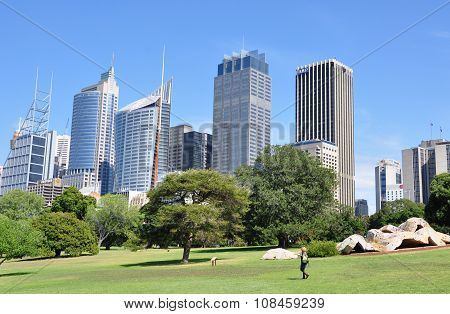 View Of The Royal Botanic Gardens In Sydney