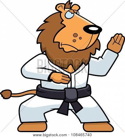 Karate Lion