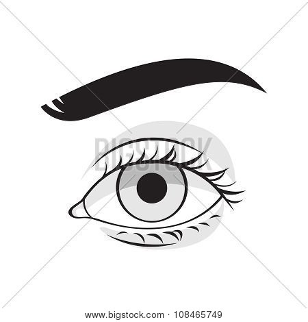 Human eye vector illustration.