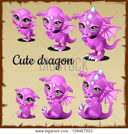 Set of little pink dragon on a parchment