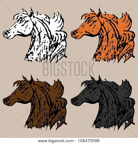 Four Heads Of Beautiful Horses