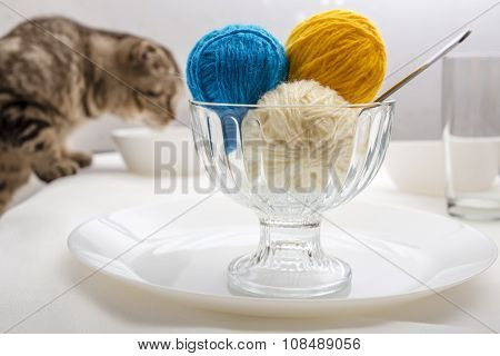 Cat  And Ball Of Wool Yarn, Which Lie Like Dessert