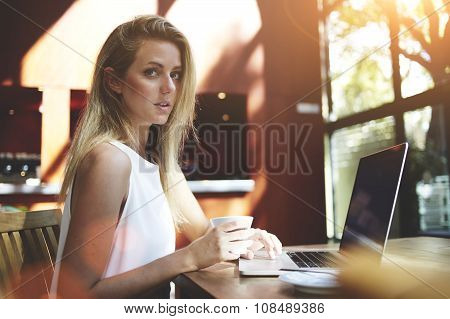 Portrait of a young beautiful Sweden woman using laptop computer while sitting in modern coffee shop