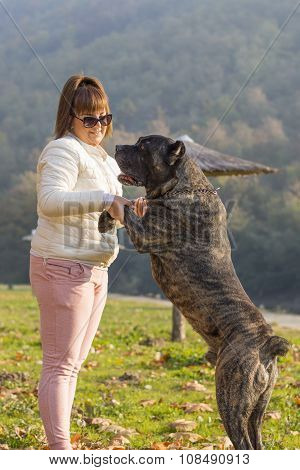 Girl Playing With Her Cane Corso Dog In The Park
