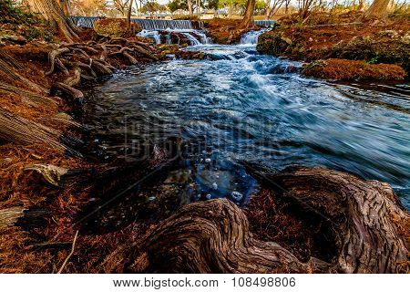 Swift Waters and Cypress Roots Along a Texas River