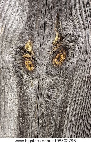 Old Wooden Board With Knots Like Eyes Of An Owl