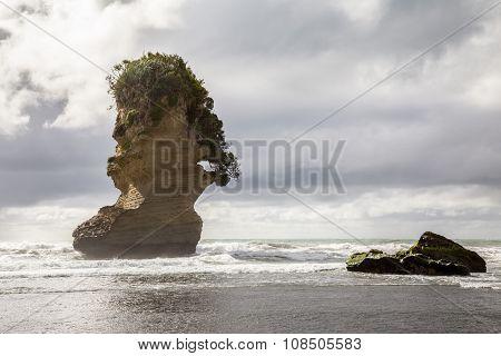 Pancake Rocks Punakaiki West Coast South Island New Zealand