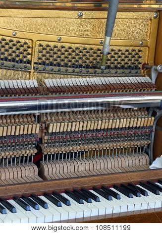 Tuner Inside Of A Piano With Little Hammer And Strings
