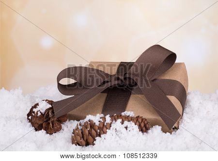 Present In Snow