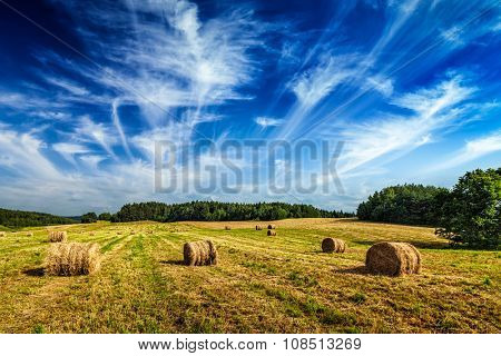 Hay bales on field in summer