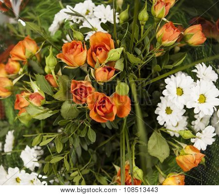 Autumn bouquet of roses close-up chrysanthemum aster