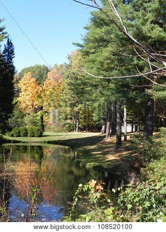 Graveyard Pond