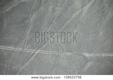 Aerial View Of Nazca Lines - Dog Geoglyph, Peru.