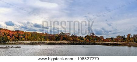 Autumn Lake Panorama Landscape