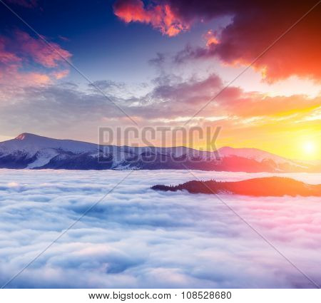 Majestic foggy landscape glowing by sunlight in the morning. Dramatic and picturesque wintry scene. Location Carpathian, Ukraine, Europe. Beauty world. Instagram toning effect. Happy New Year!