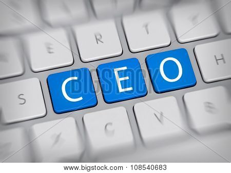 SEO concept for a Chief Executive Officer with the letters - CEO - on three blue keys or IT buttons on a white computer keyboard viewed high angle with blur vignette for focus. 3d Rendering.