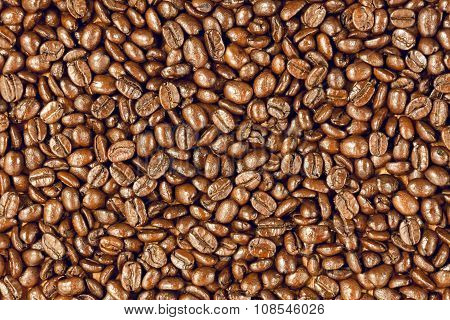 the texture coffee beans of arabica background.