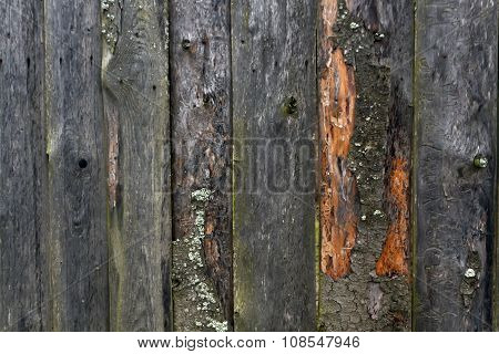 Rough Wooden Fence.