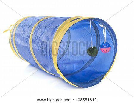 Blue Cat Tunnel