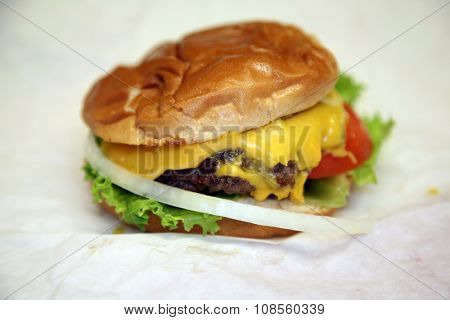 a Real Cheese Burger from a small restaurant. Shot with a shallow depth of filed. focus on the front of the cheese burger.