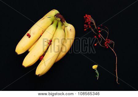 Bunch of bananas on black background, Fresh organic Banana, Fresh bananas on kitchen table