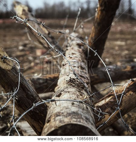 Military composition - barbed wire on antipersonnel obstacles