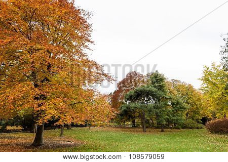 Vienna Stadpark in November, Austria